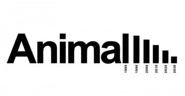 Ali Omrani - Graphic Designer