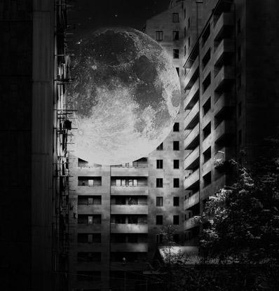 Ghazaleh Ghazanfari  - Photographer