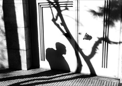 mohammad shams - photographer