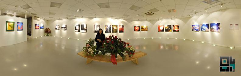 خانه هنرمندان ایران و گردش مجازی در نمایشگاه شادی بنی صدر