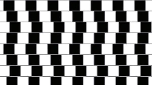 دوازده تصویر در دنیای خطای دید